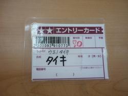 P1040234.JPG